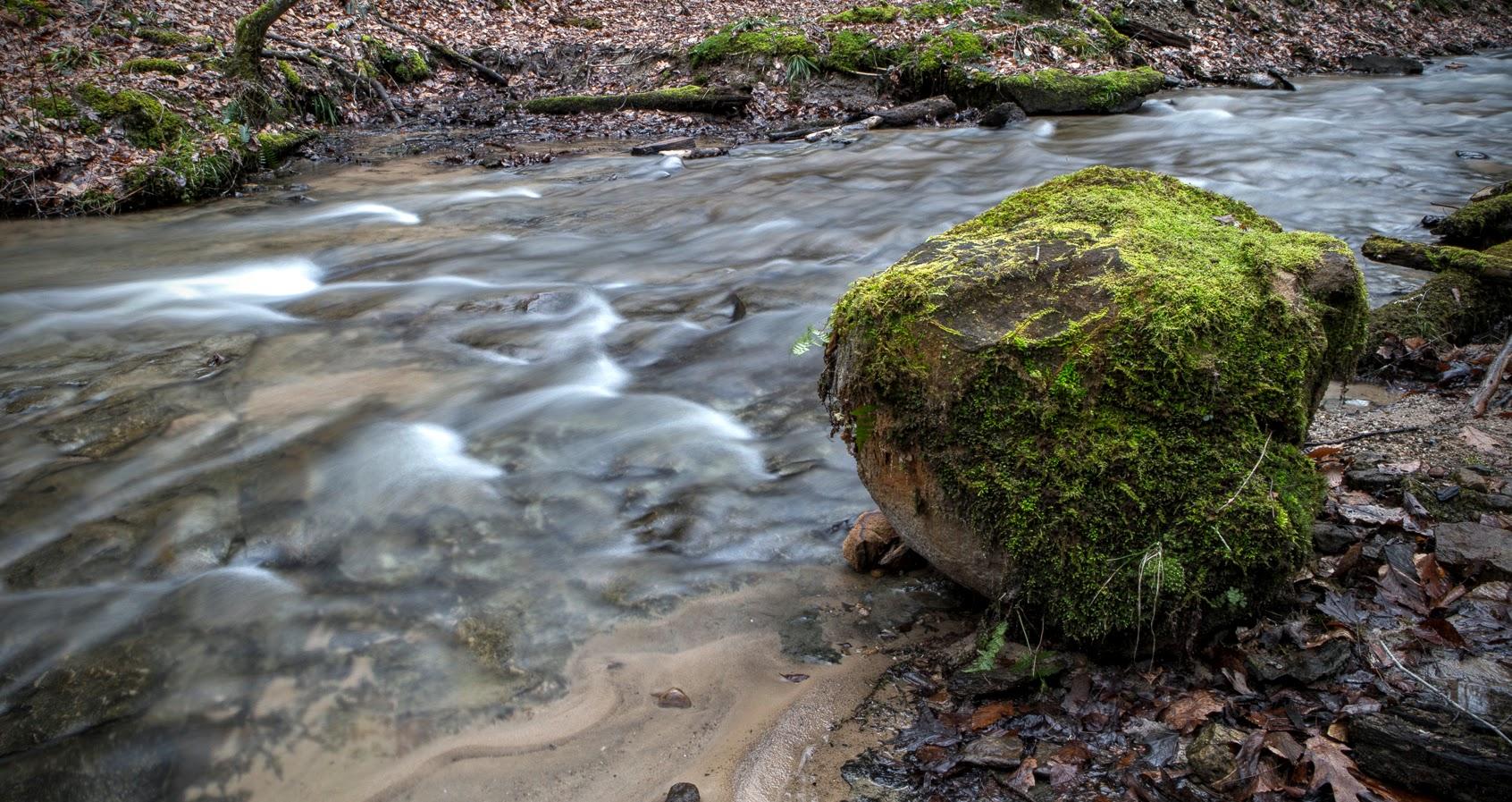 creek-9576
